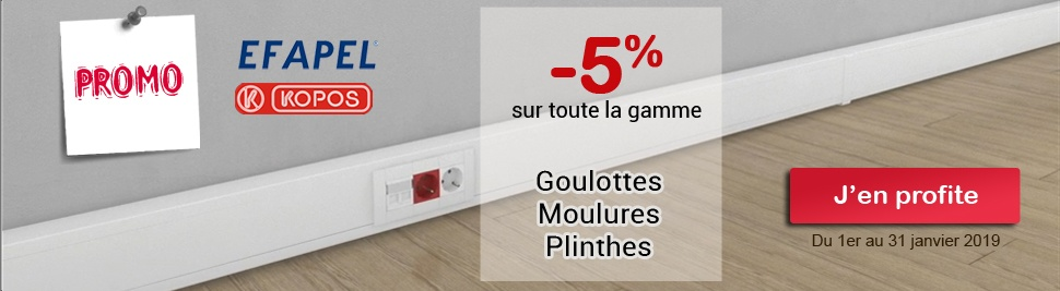 Promotion -5% sur Goulotte, Plinthe et Moulure sur Bis Electric du 1er au 30 janvier 2017